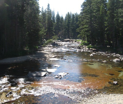 Tuolumne River near the Meadows.