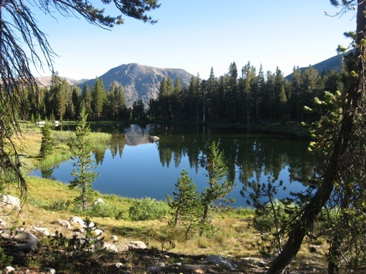 Small lake off the trail from Tioga Pass leading toward Mt. Dana.