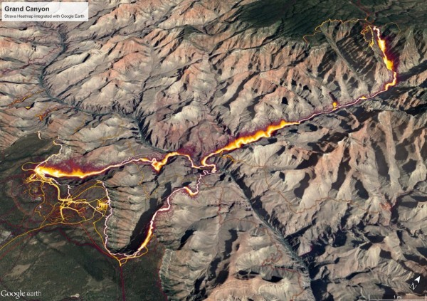 Strava Heatmap Activity for the Grand Canyon visualized in Google Eart...