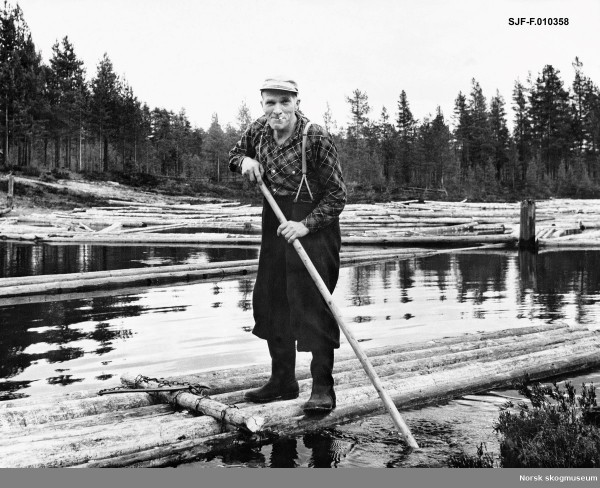 Log driver Gotmar Sletengen, Ringlidammen i Julussa, Nordskogbygda, El...