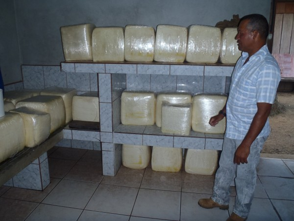 Rancher showing me his cheese making operation