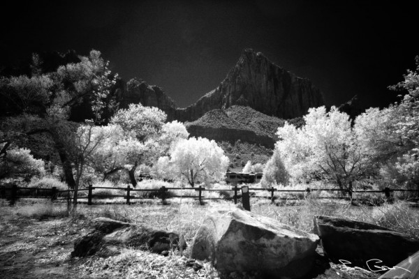 An Infrared that I got from when we were climbing in Zion...