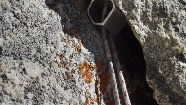 Cam v.1 & lichen