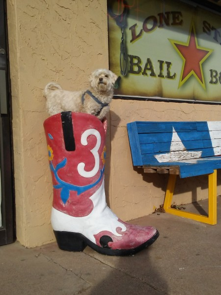 Lucas in a Boot