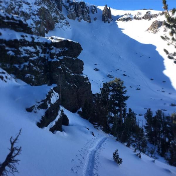 skintrack and ski tracks