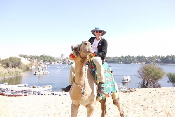 Lulu the Camel