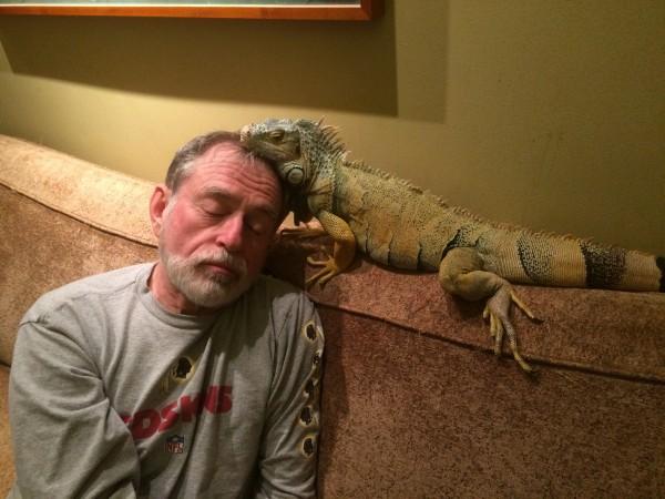 I am the Iguana Whisperer.