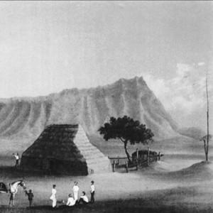 An image of a Hawai'ian smallpox hospital (~1853-1859)