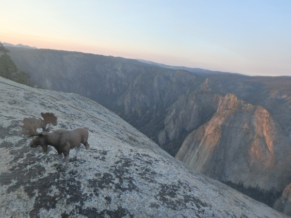 Mooseolini enjoying the summit sunrise