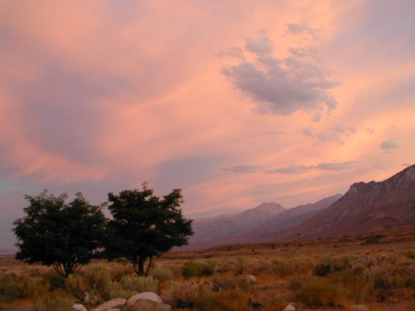 Owens River Valley.  No filter or photoshop just summer evening light