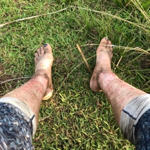 back at pololu: tromping in the bush is neither good for the skin nor ...