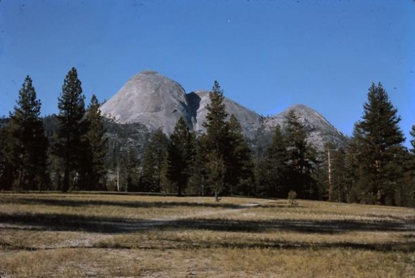 Mt. Starr King from near the trail from Mono Meadows that parallels Il...