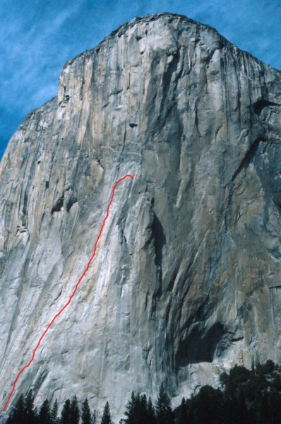 Grape Race El Capitan