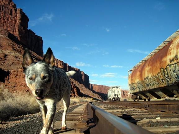 Slack On The Tracks