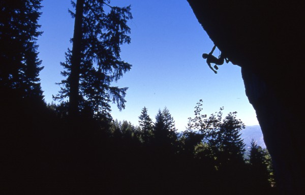 "Eric Chemello entering the business of ""Burnt Offering"" 5.14a. Trinity..."