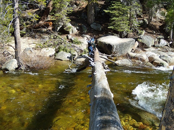 Log crossing Illilouette Creek. Downstream from the trail