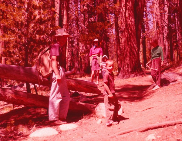 Cathedral Lakes Trail ca. 1961