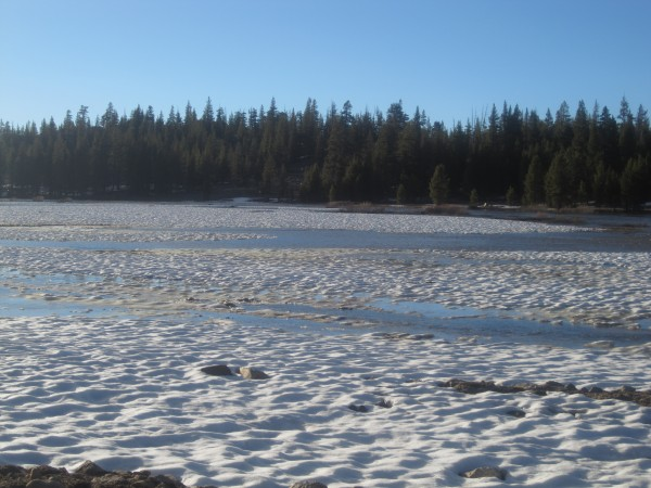 ice flow in Tuolumne Meadows opening weekend.