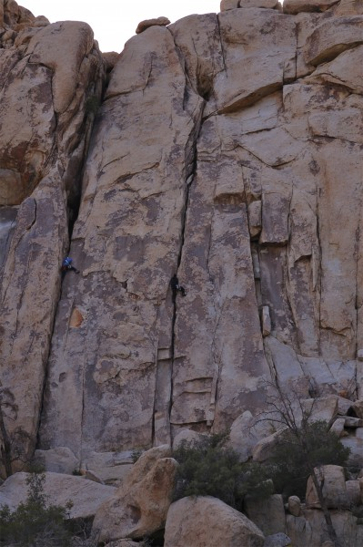 Brian(L) Johnny(R) <br/>