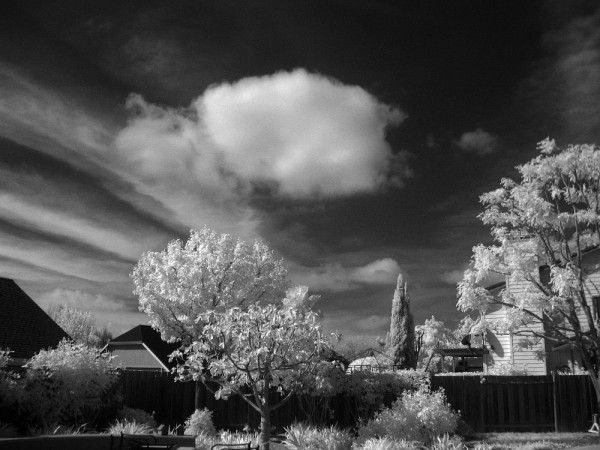I converted an old, cheap, point and shoot, digital camera to infrared...