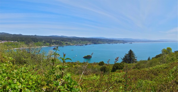 Trinidad Bay, north of Arcata, CA, May 1, 2011.
