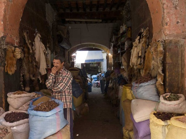 There's not much you can't buy in Morocco.