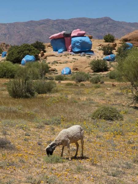 unpainted goats