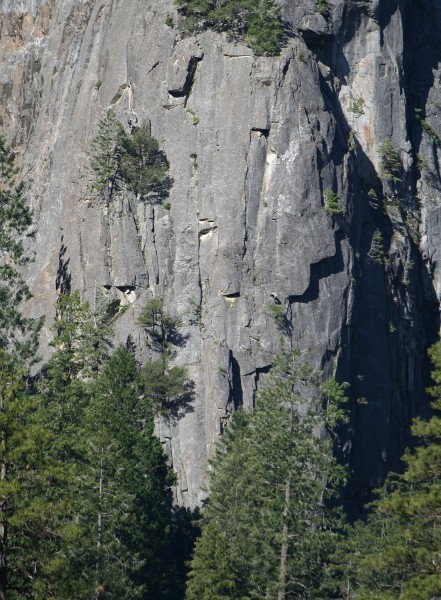 Lower Cathedral Rock, NE Buttress, lower part, from El Cap Meadow