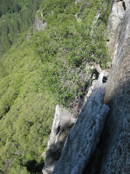 Looking back from the top of Duck and Cover on pitch two.