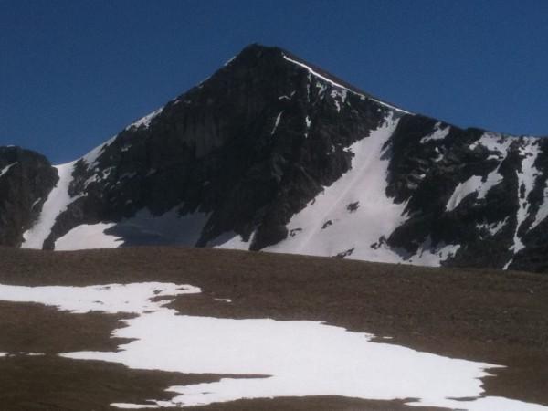 Mt Dana!