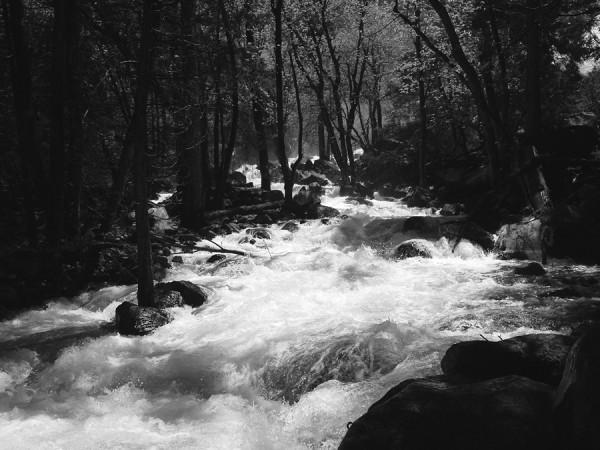 """bridalveil """"creek"""""""