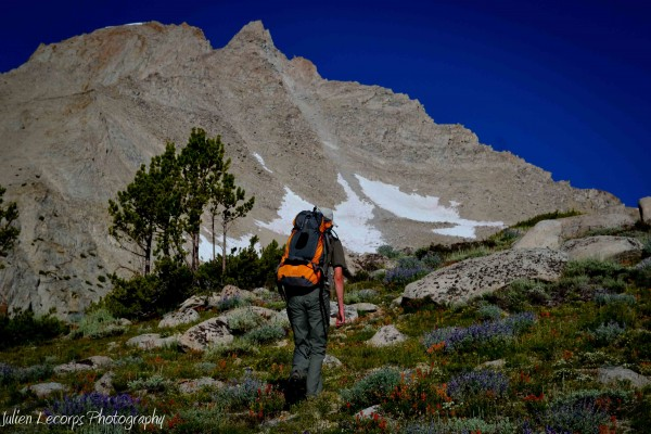 Clear view of the Lower Ridge, headed towards the saddle between Peak ...