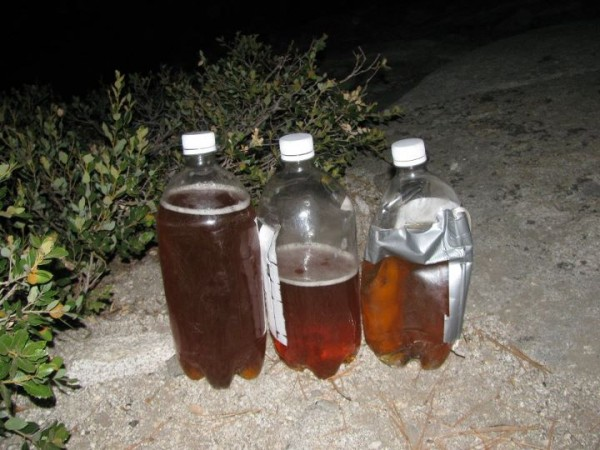 Hauled 7 liters (15 pounds) of urine.  We all felt good about ...
