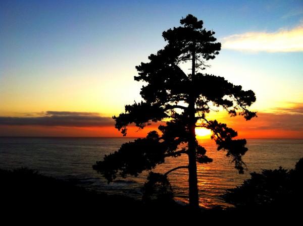 Big Sur Headlands