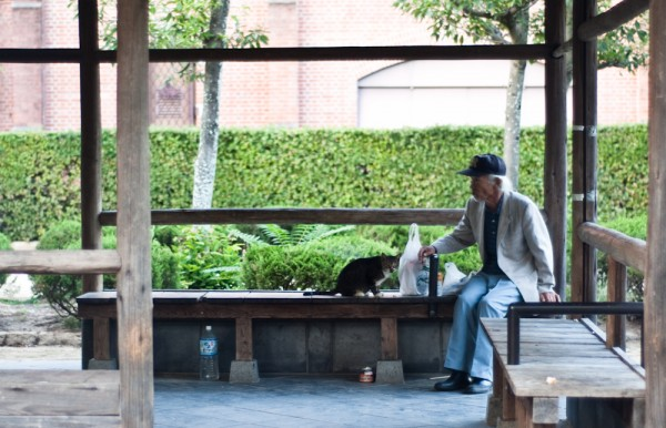 Cat Man do.  Sorry, bad pun, not in Nepal, more Himeji Castle cat acti...