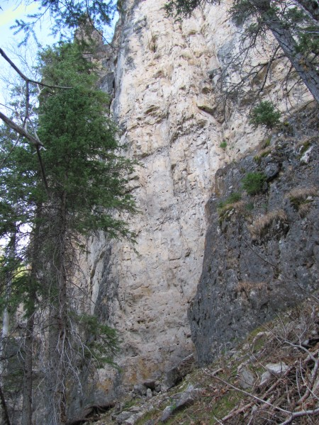 Virgin Limestone 11.5 miles up canyon from Spearfish above the two big...