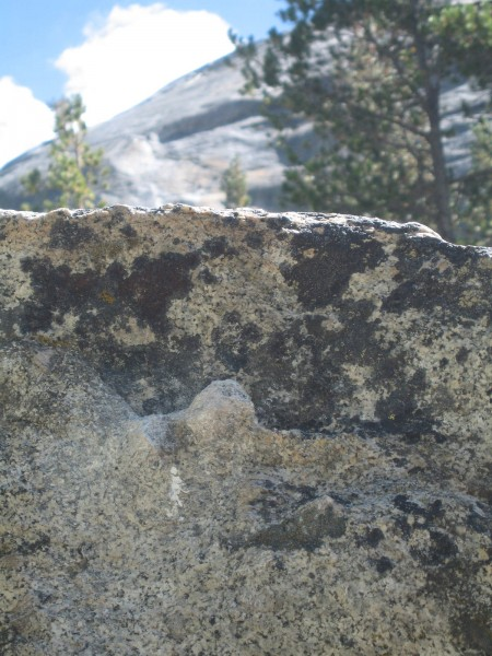 One of the biggest Tuolumne Bouldering knobs! - Pywiack Boulder.